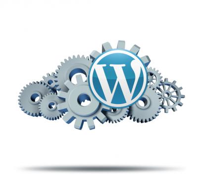 Cómo elegir un buen hosting para tu WordPress?